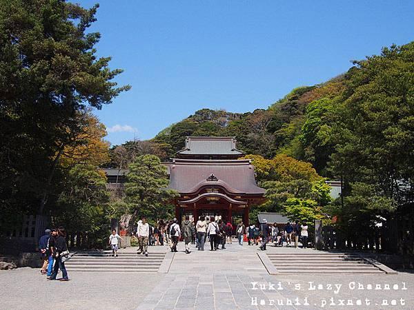 鎌倉鶴岡八幡宮1