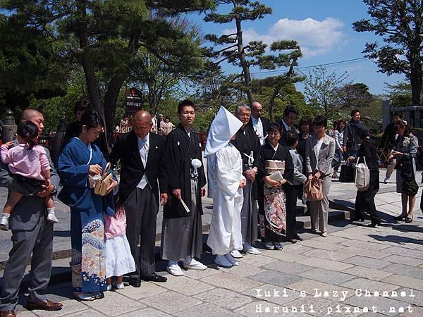 鎌倉鶴岡八幡宮14