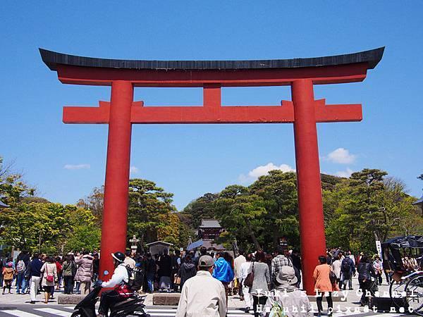鎌倉鶴岡八幡宮13