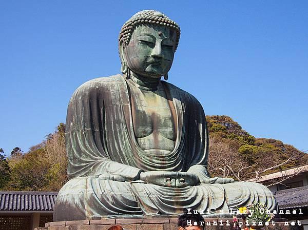 鎌倉大佛3