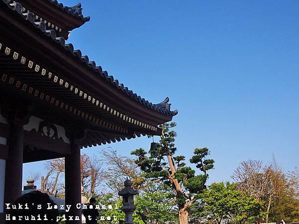 鎌倉長谷寺4