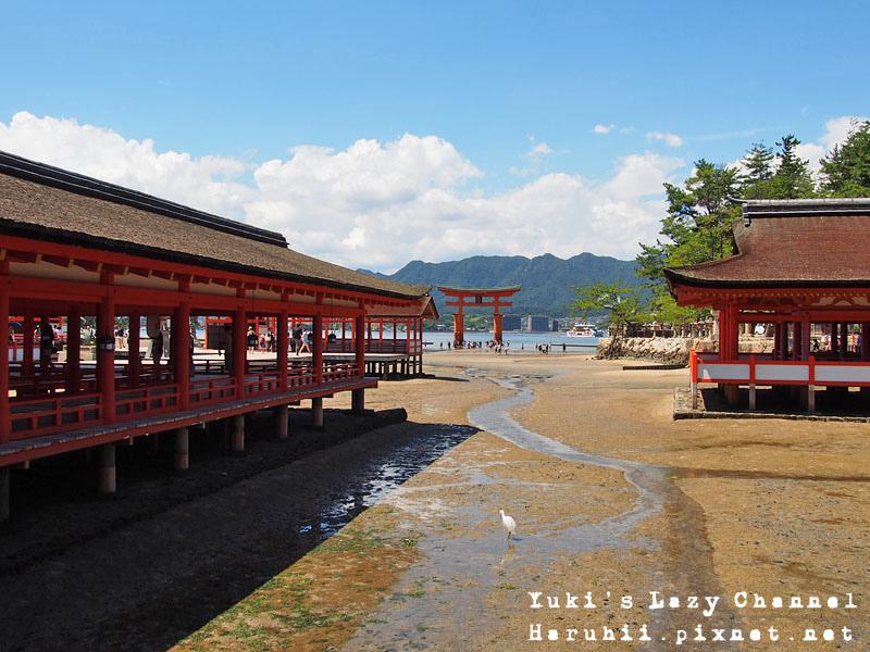 廣島宮島嚴島神社31