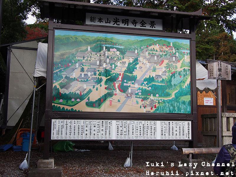 京都長岡光明寺賞楓5