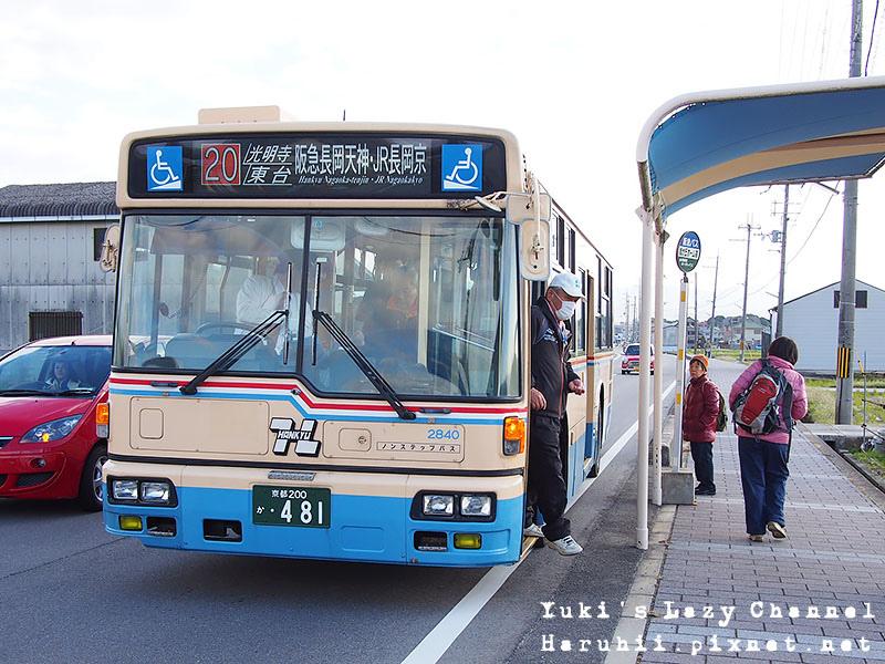 京都長岡光明寺賞楓12