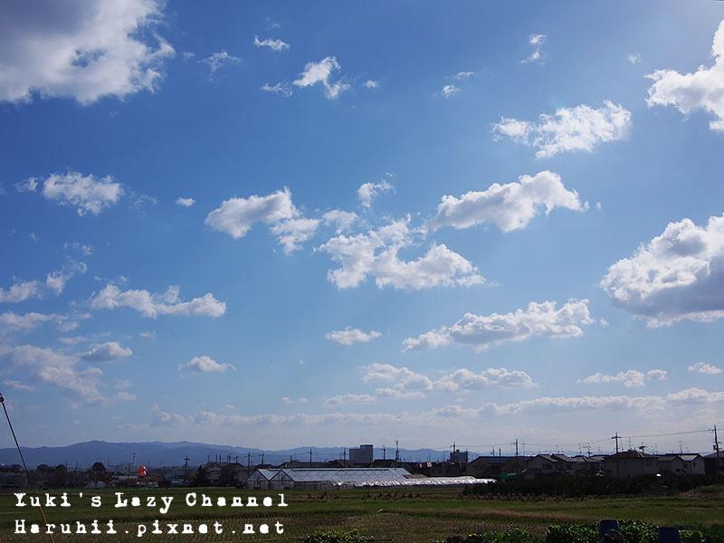 京都長岡光明寺賞楓45