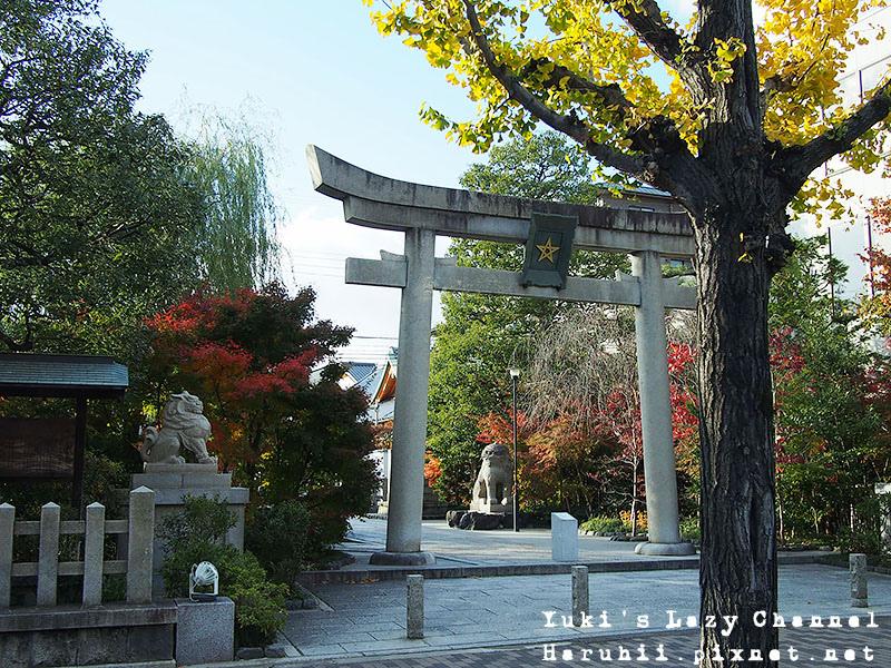 京都一条ivy25