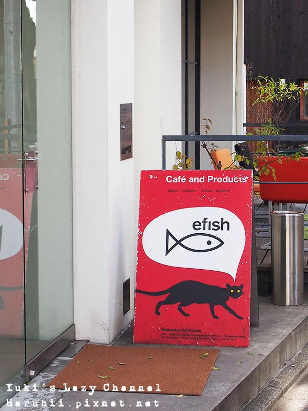 efish1