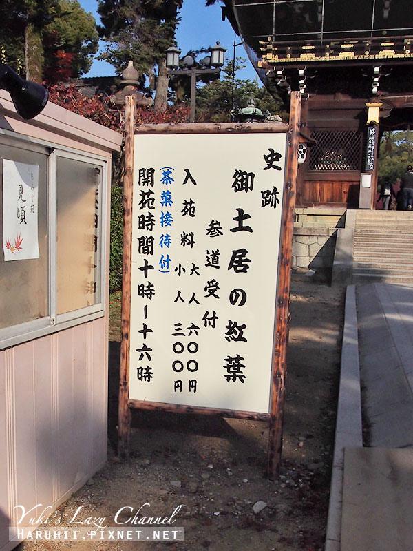 京都北野天滿宮御土居賞楓3
