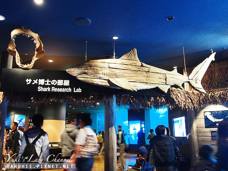 沖繩美麗海水族館沖縄美ら海水族館22
