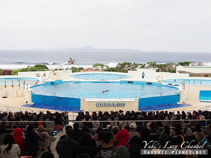 沖繩美麗海水族館沖縄美ら海水族館27