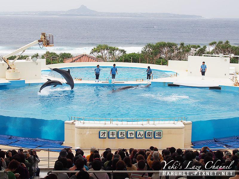 沖繩美麗海水族館沖縄美ら海水族館28
