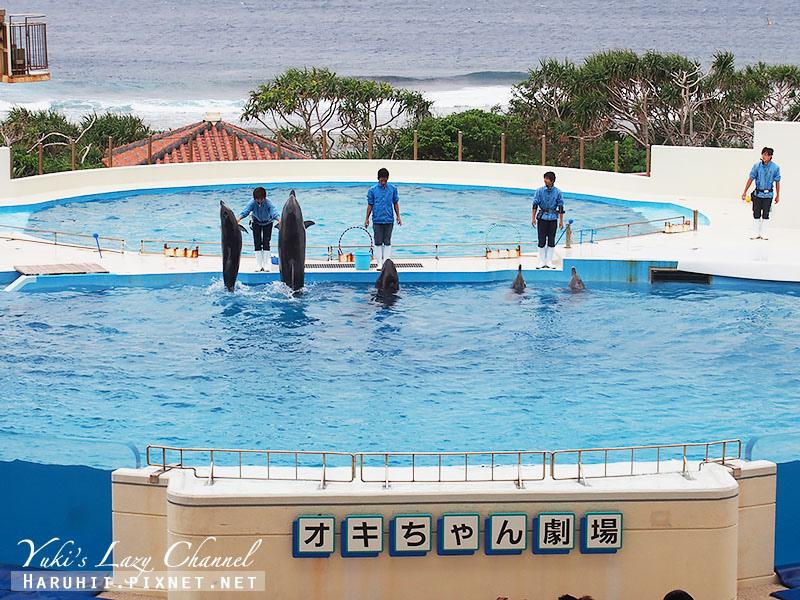 沖繩美麗海水族館沖縄美ら海水族館29