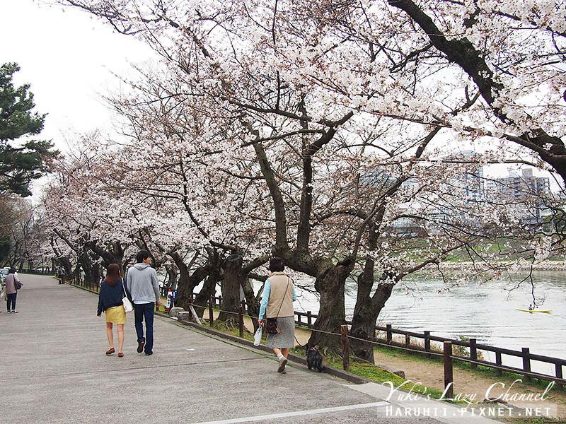 岡山後樂園10
