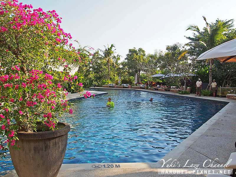 Rimba jimbaran bali峇里島金巴蘭森林酒店泳池3