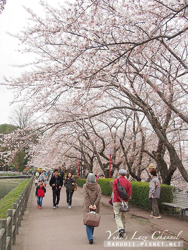 盛岡高松公園賞櫻10