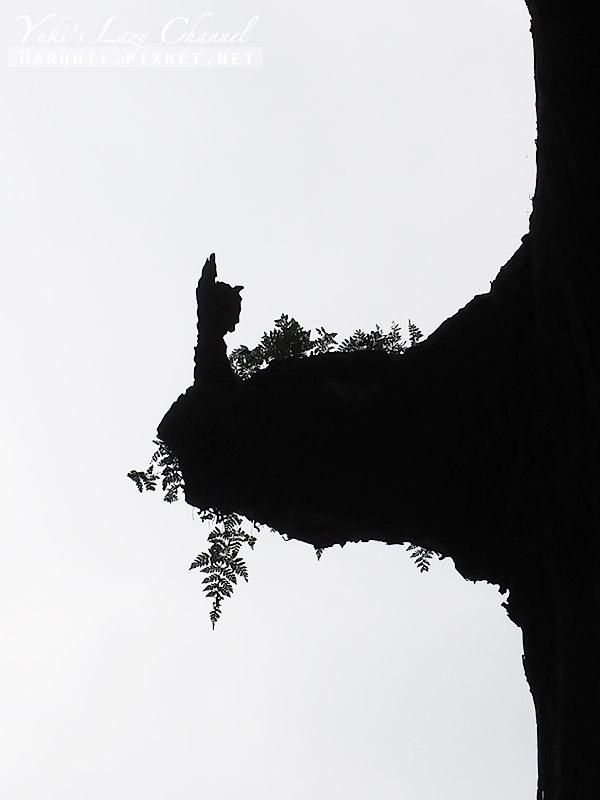 霧島神宮12