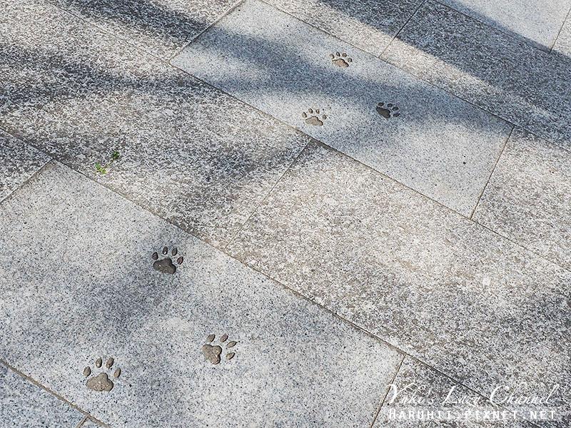 德島貓咪神社1.jpg