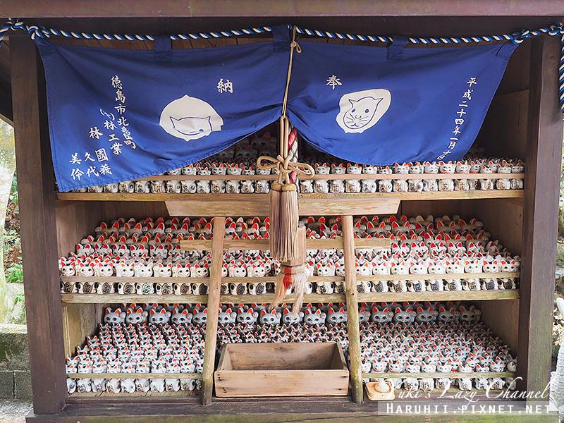 德島貓咪神社2.jpg