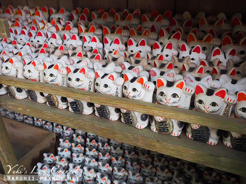 德島貓咪神社3.jpg
