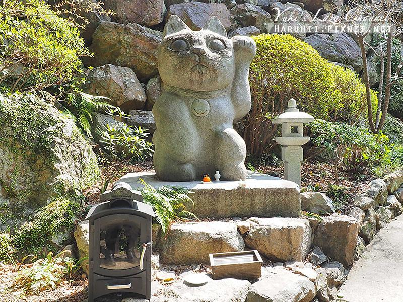 德島貓咪神社4.jpg