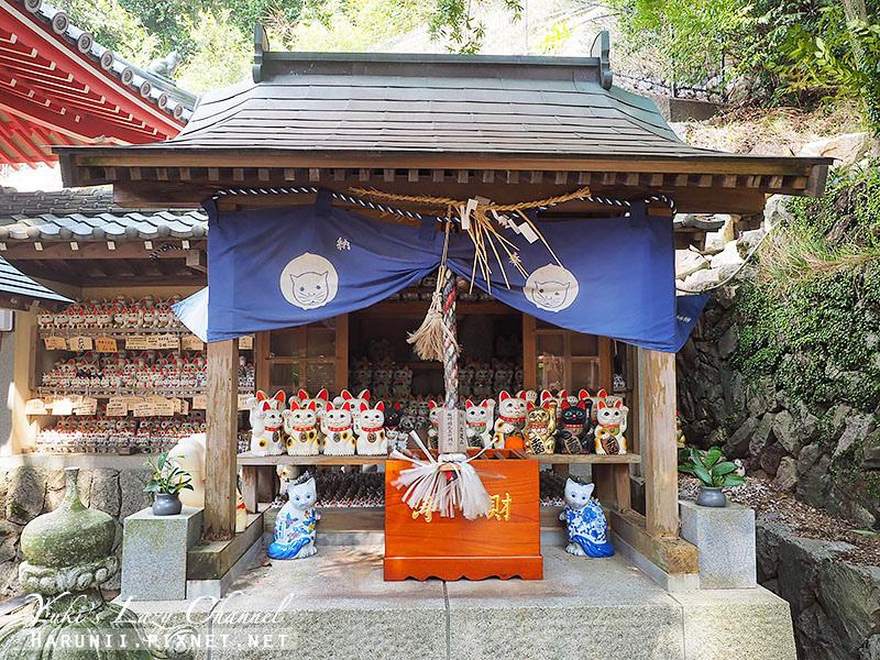 德島貓咪神社7.jpg