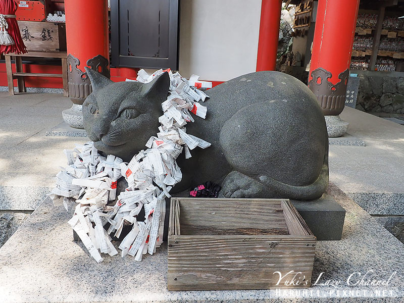 德島貓咪神社8.jpg