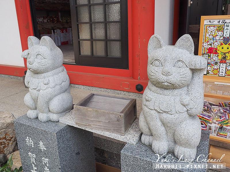 德島貓咪神社16.jpg