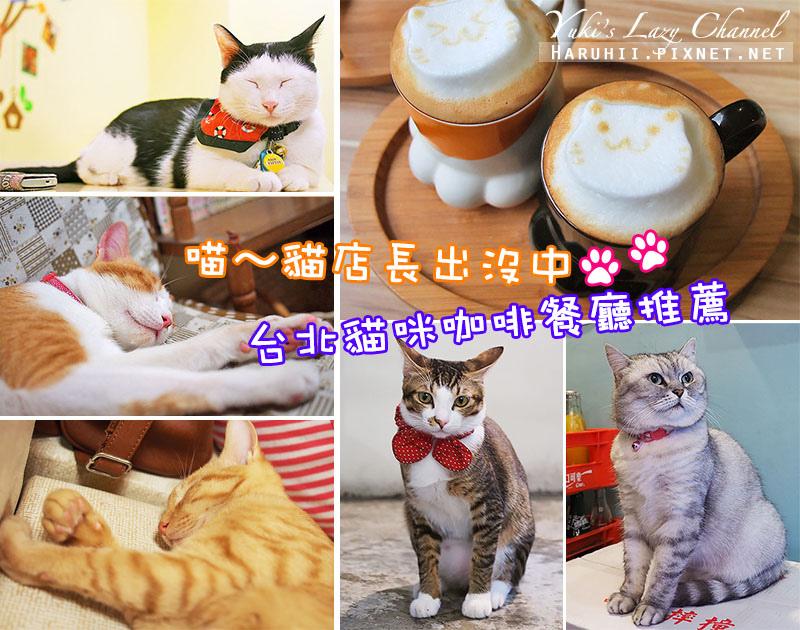台北貓咪咖啡餐廳.jpg