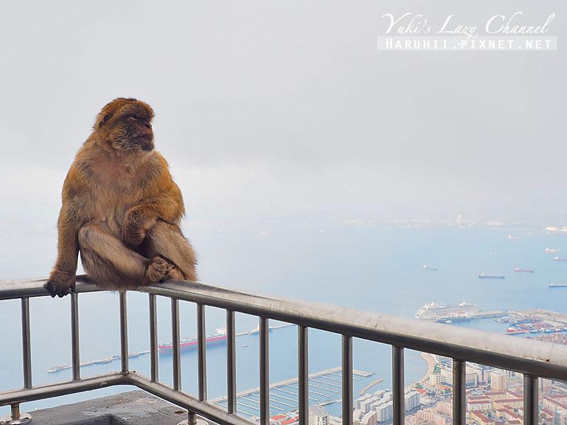 直布羅陀Gibraltar34.jpg