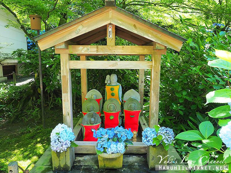 鐮倉明月院繡球花13.jpg