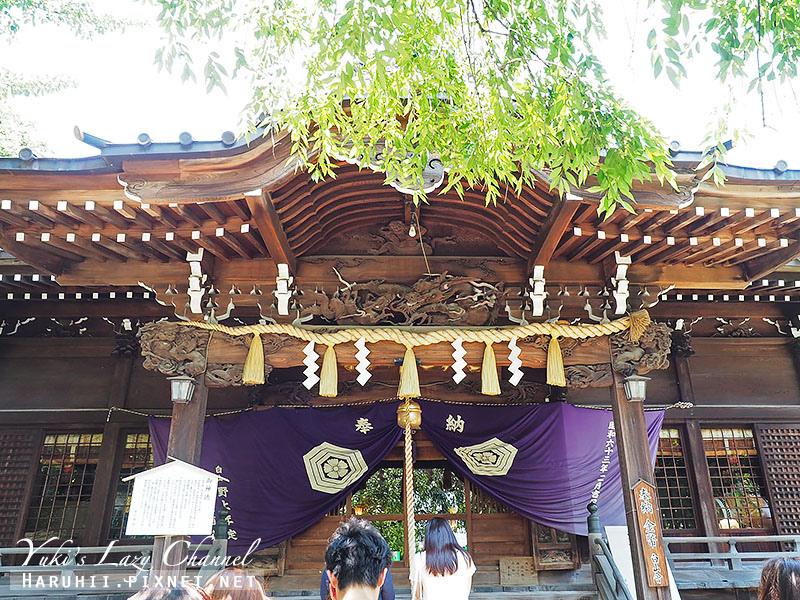 白山神社繡球花4.jpg