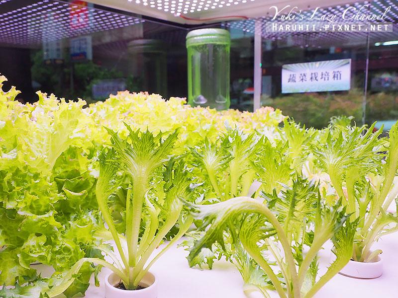 韓老大韓式烤肉海鮮九層塔6.jpg
