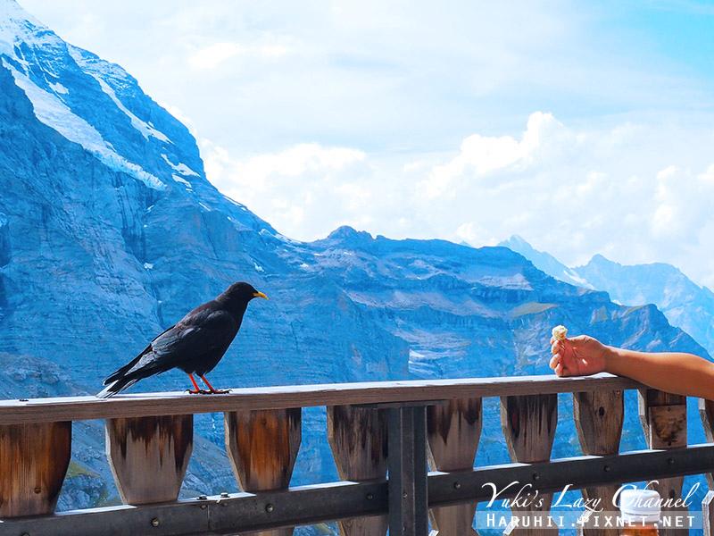 Eigergletscher艾格冰河餐廳2.jpg