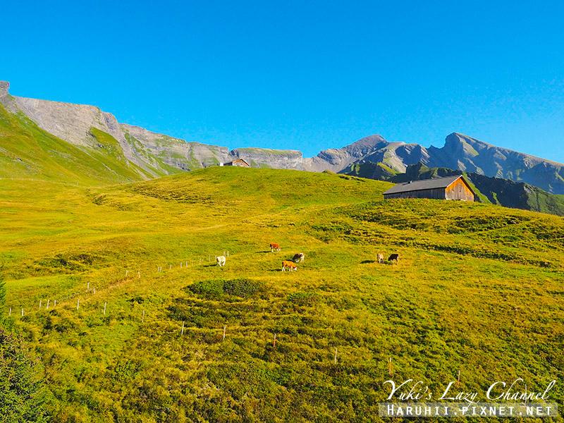 Grindelwald FIRST菲斯特19.jpg