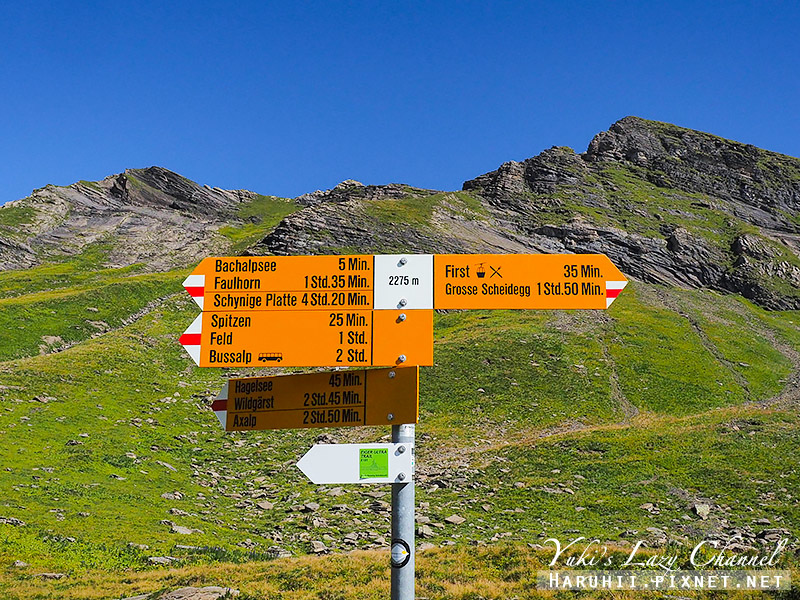 Grindelwald FIRST菲斯特25.jpg