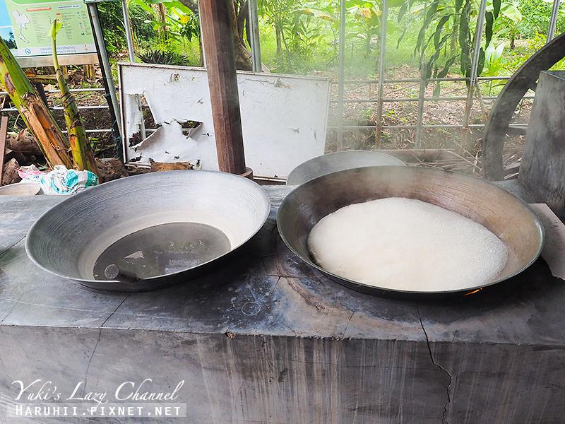 Ban Bang Phlap Community椰糖製作1.jpg