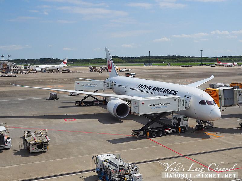 日航JAL 日本航空4.jpg