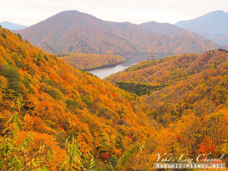 福島磐梯吾妻lake line中津川溪谷19.jpg