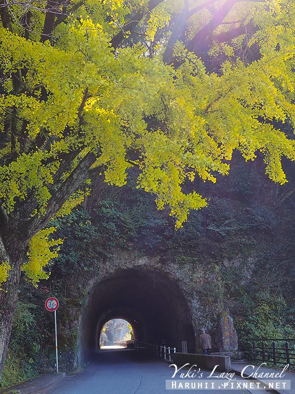 青之洞門2.jpg