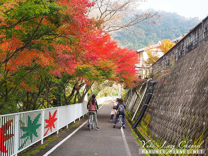 耶馬溪腳踏車道5.jpg