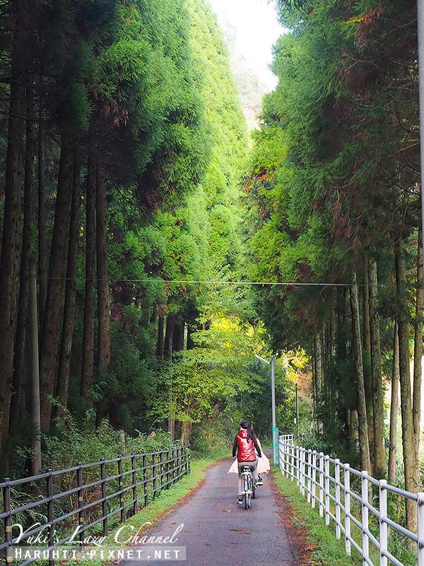 耶馬溪腳踏車道7.jpg