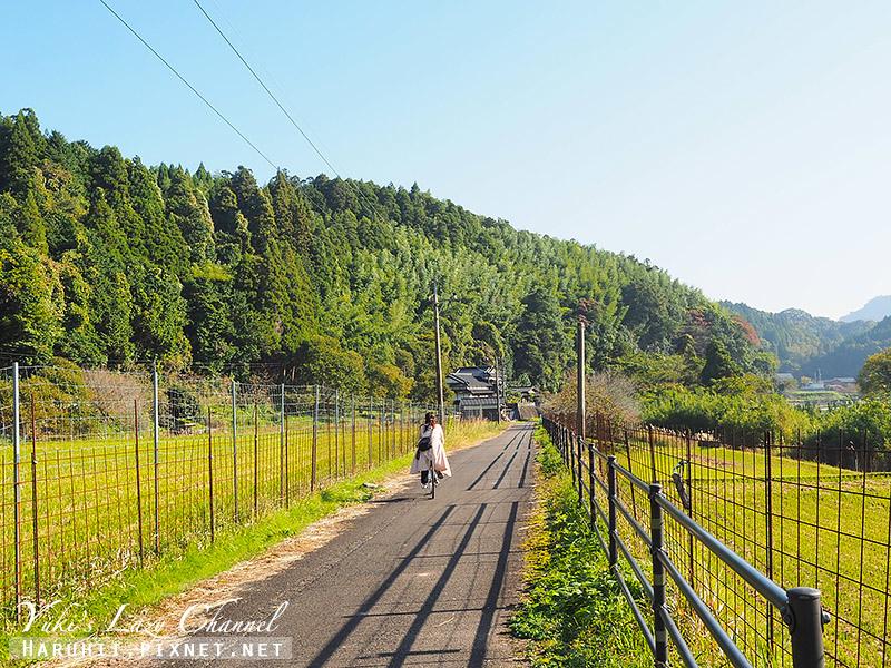 耶馬溪腳踏車道10.jpg