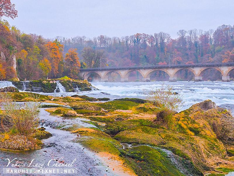 萊茵瀑布Rheinfall14.jpg