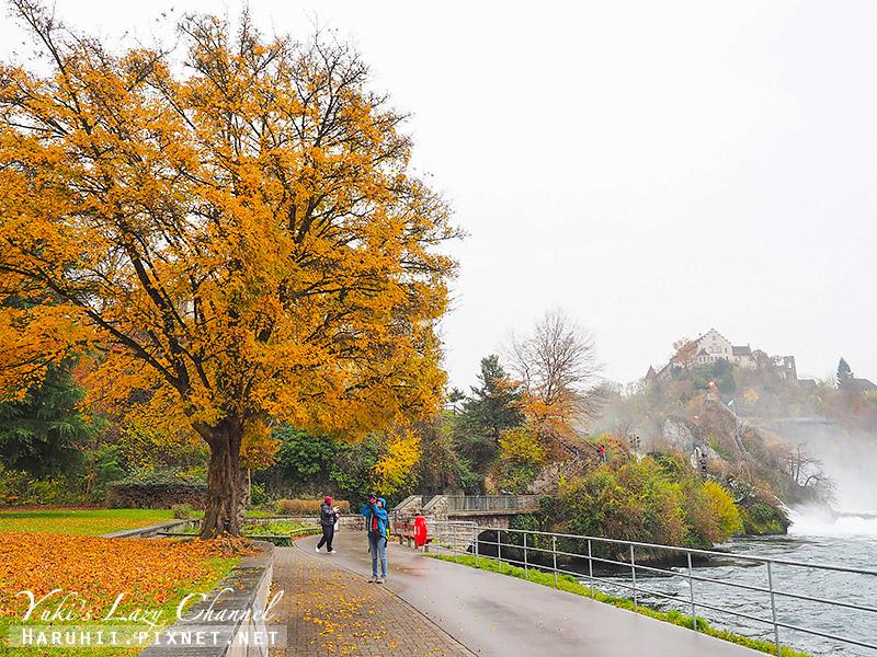 萊茵瀑布Rheinfall15.jpg