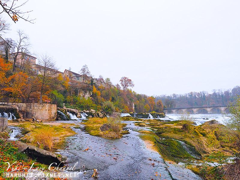 萊茵瀑布Rheinfall16.jpg