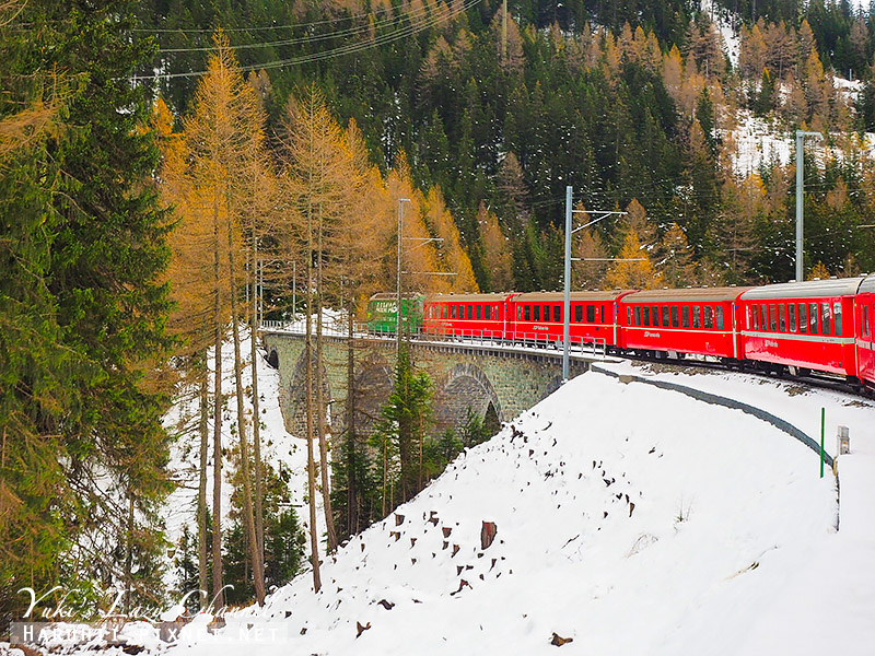 Bernina express 伯連納列車25.jpg