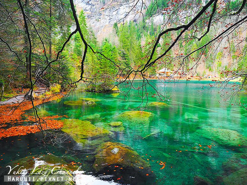 Blausee藍湖8.jpg