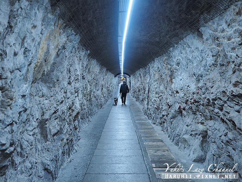 少女峰車站Jungfrau9.jpg