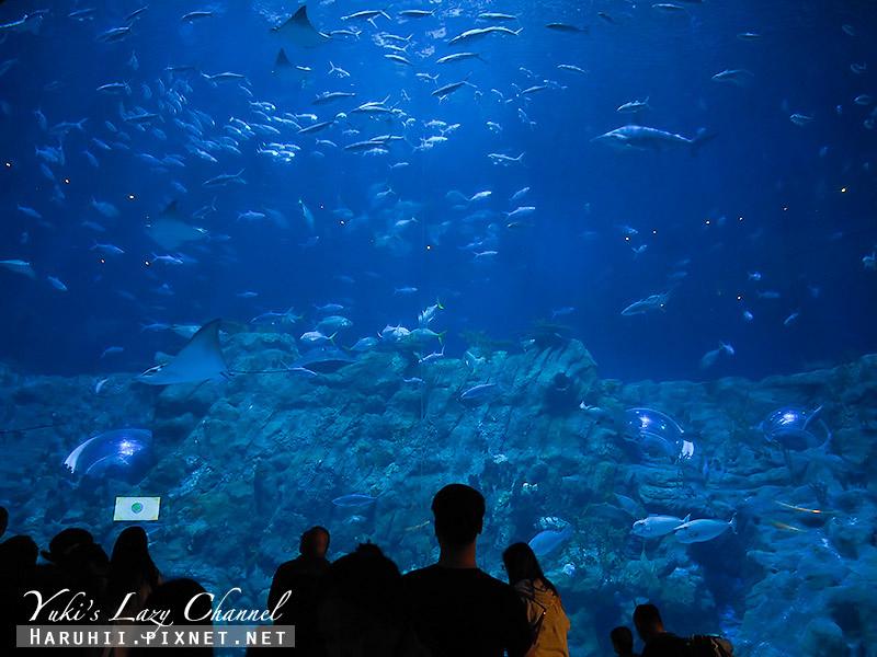 香港海洋公園19.jpg