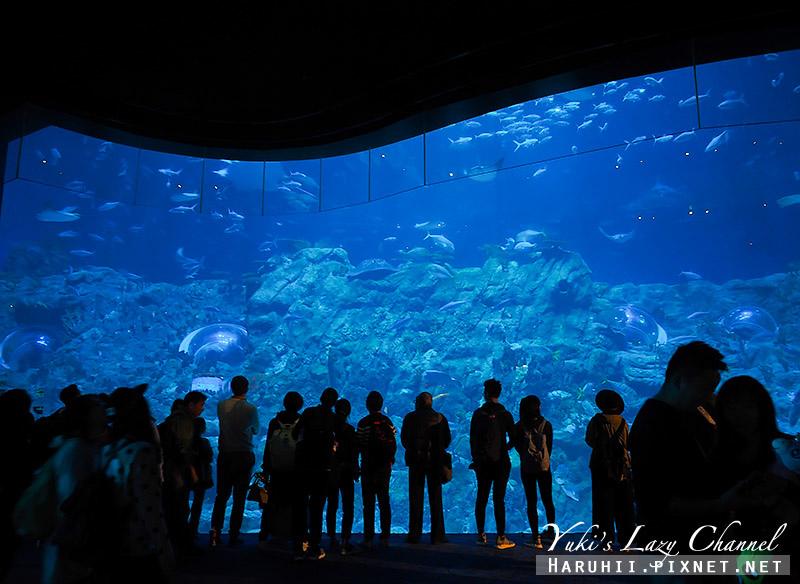香港海洋公園20.jpg